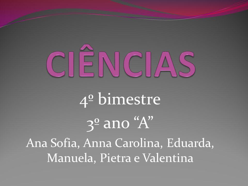 4º bimestre 3º ano A Ana Sofia, Anna Carolina, Eduarda, Manuela, Pietra e Valentina