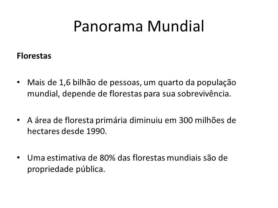 Panorama Mundial Florestas Mais de 1,6 bilhão de pessoas, um quarto da população mundial, depende de florestas para sua sobrevivência. A área de flore