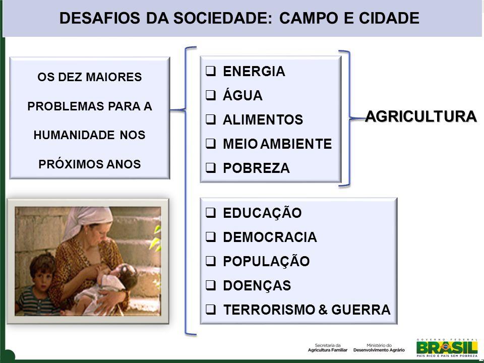 AGRICULTURA ENERGIA ÁGUA ALIMENTOS MEIO AMBIENTE POBREZA DESAFIOS DA SOCIEDADE: CAMPO E CIDADE EDUCAÇÃO DEMOCRACIA POPULAÇÃO DOENÇAS TERRORISMO & GUER