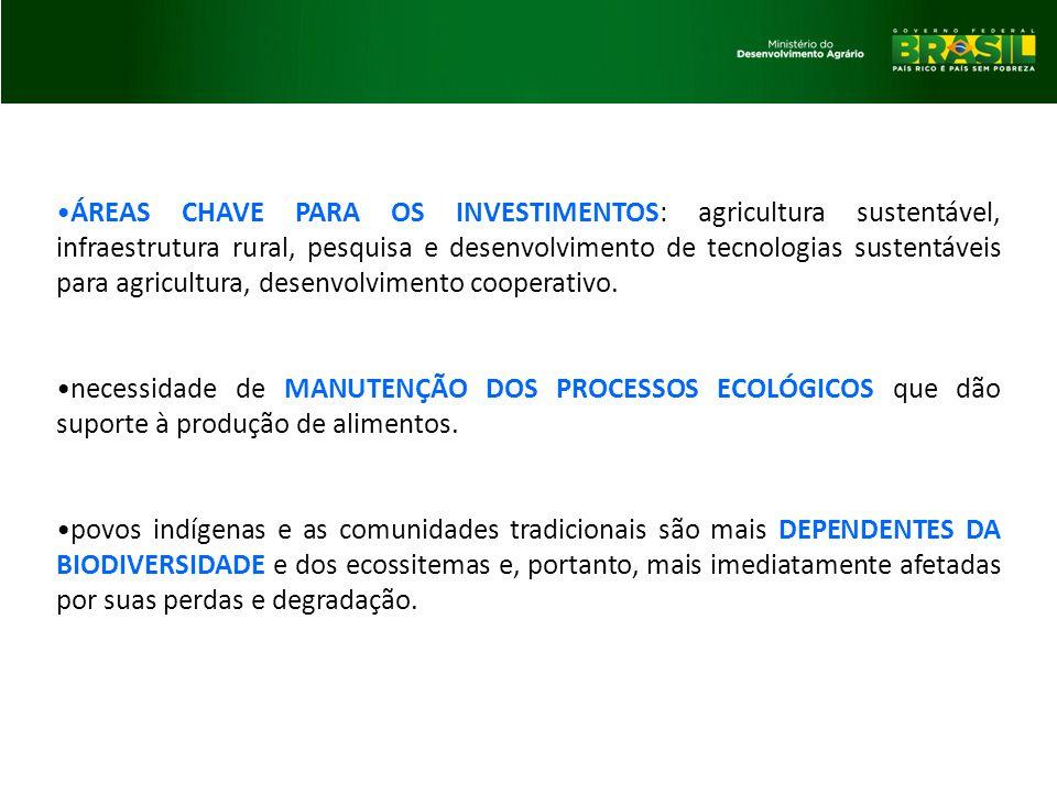 ÁREAS CHAVE PARA OS INVESTIMENTOS: agricultura sustentável, infraestrutura rural, pesquisa e desenvolvimento de tecnologias sustentáveis para agricult