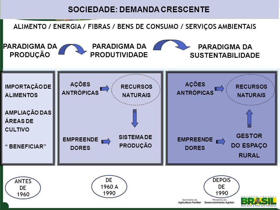 RECURSOS NATURAIS ALIMENTO / ENERGIA / FIBRAS / BENS DE CONSUMO / SERVIÇOS AMBIENTAIS SISTEMA DE PRODUÇÃO AÇÕES ANTRÓPICAS EMPREENDE DORES GESTOR DO E