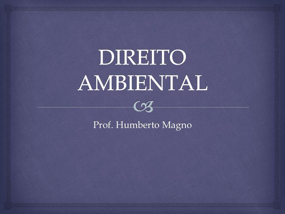 Prof. Humberto Magno