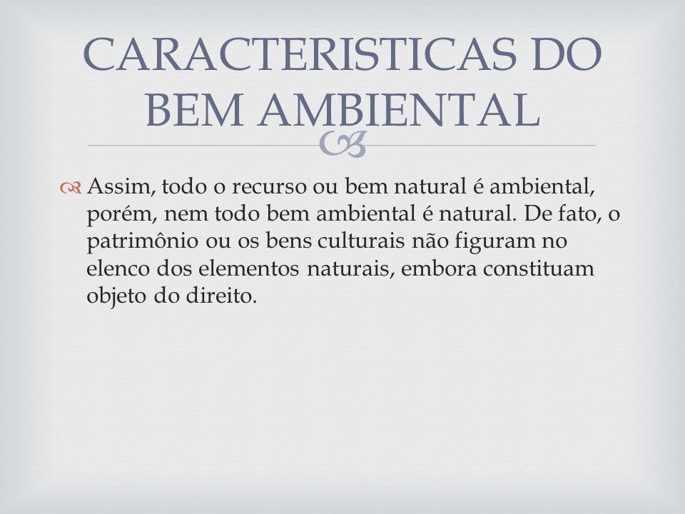 Assim, todo o recurso ou bem natural é ambiental, porém, nem todo bem ambiental é natural. De fato, o patrimônio ou os bens culturais não figuram no e