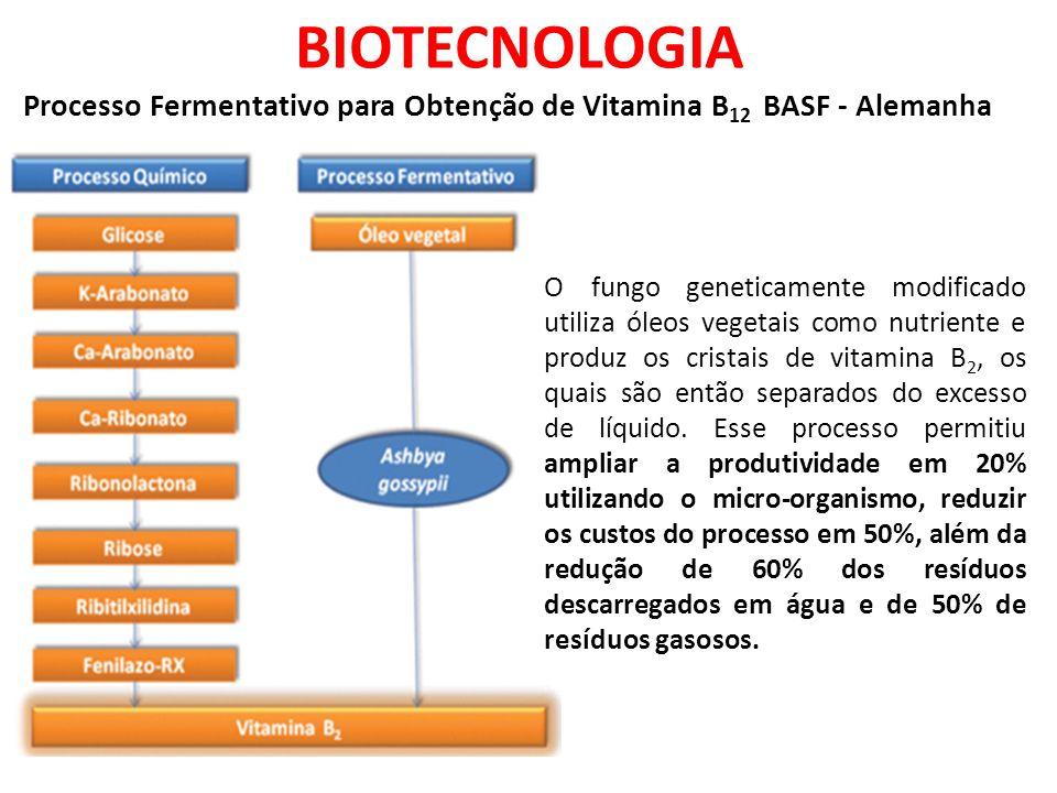 BIOTECNOLOGIA Processo Fermentativo para Obtenção de Vitamina B 12 BASF - Alemanha O fungo geneticamente modificado utiliza óleos vegetais como nutriente e produz os cristais de vitamina B 2, os quais são então separados do excesso de líquido.