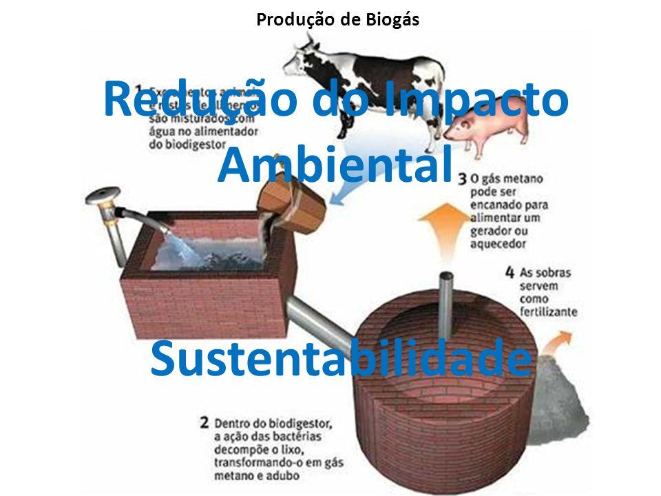 Produção de Biogás Redução do Impacto Ambiental Sustentabilidade