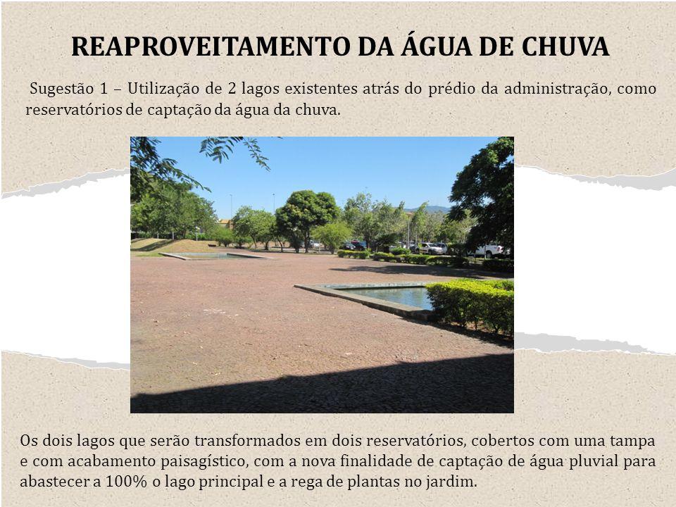 Sugestão 1 – Utilização de 2 lagos existentes atrás do prédio da administração, como reservatórios de captação da água da chuva.