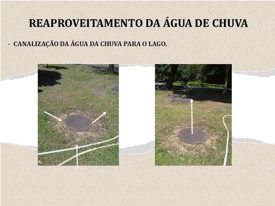 - CANALIZAÇÃO DA ÁGUA DA CHUVA PARA O LAGO. REAPROVEITAMENTO DA ÁGUA DE CHUVA