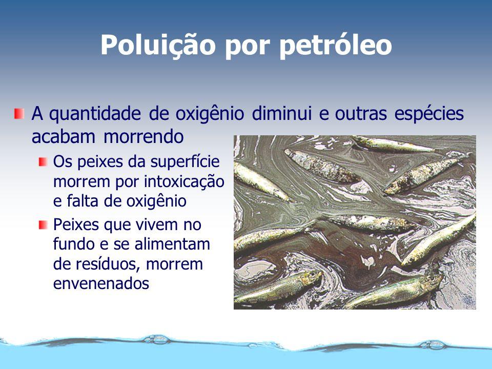Poluição por petróleo A quantidade de oxigênio diminui e outras espécies acabam morrendo Os peixes da superfície morrem por intoxicação e falta de oxi
