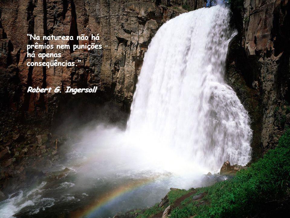 Na natureza não há prêmios nem punições – há apenas conseqüências. Robert G. Ingersoll