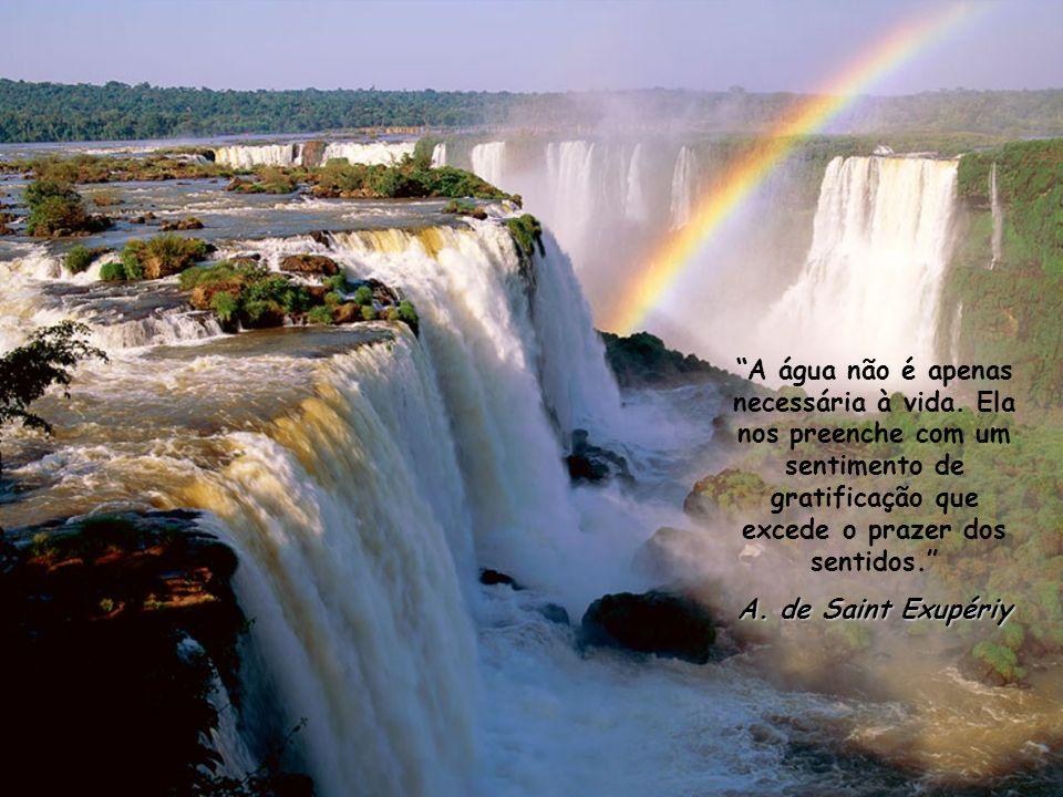 A água não é apenas necessária à vida.