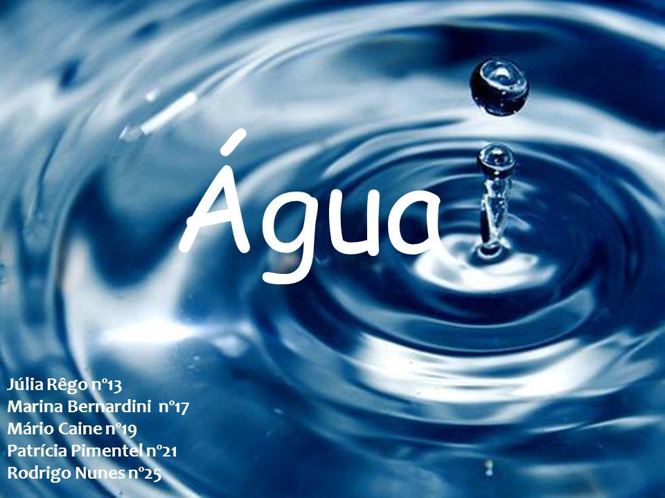 Água Júlia Rêgo nº13 Marina Bernardini nº17 Mário Caine nº19 Patrícia Pimentel nº21 Rodrigo Nunes nº25
