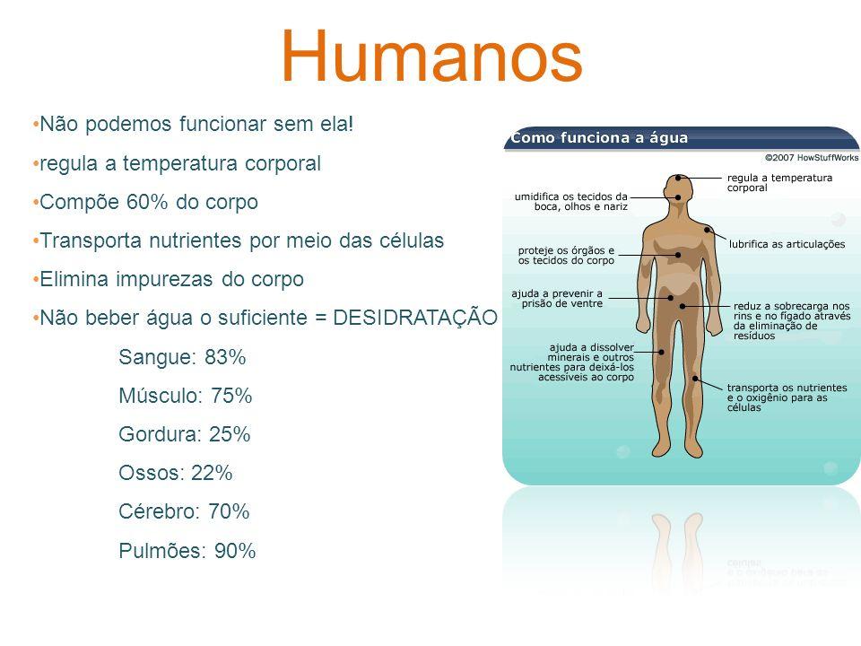 Humanos Não podemos funcionar sem ela! regula a temperatura corporal Compõe 60% do corpo Transporta nutrientes por meio das células Elimina impurezas