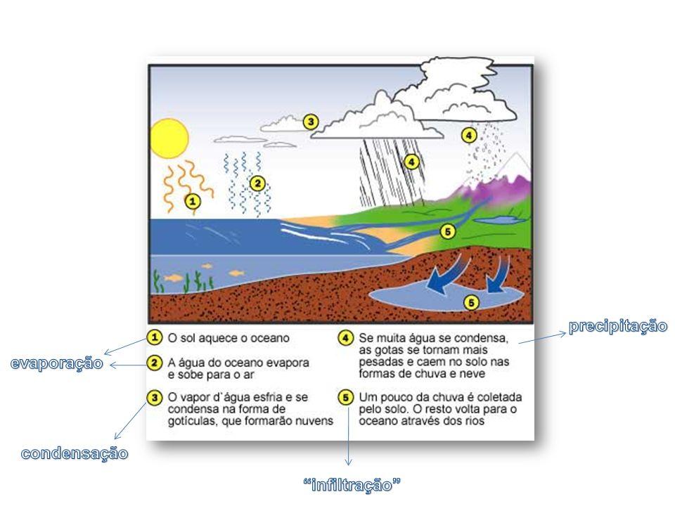 Etapas Precipitação: vapor de água condensado que cai sobre a superfície terrestre Evaporação: transformação da água no seu estado líquido para o estado gasoso à medida que se desloca da superfície para a atmosfera Transpiração: forma como a água existente nos organismos passa para a atmosfera Condensação: transformação do vapor de água em água líquida, com a criação de nuvens e nevoeiro Sublimação: passagem direta da água da fase sólida para a de vapor Ocorrem simultaneamente.