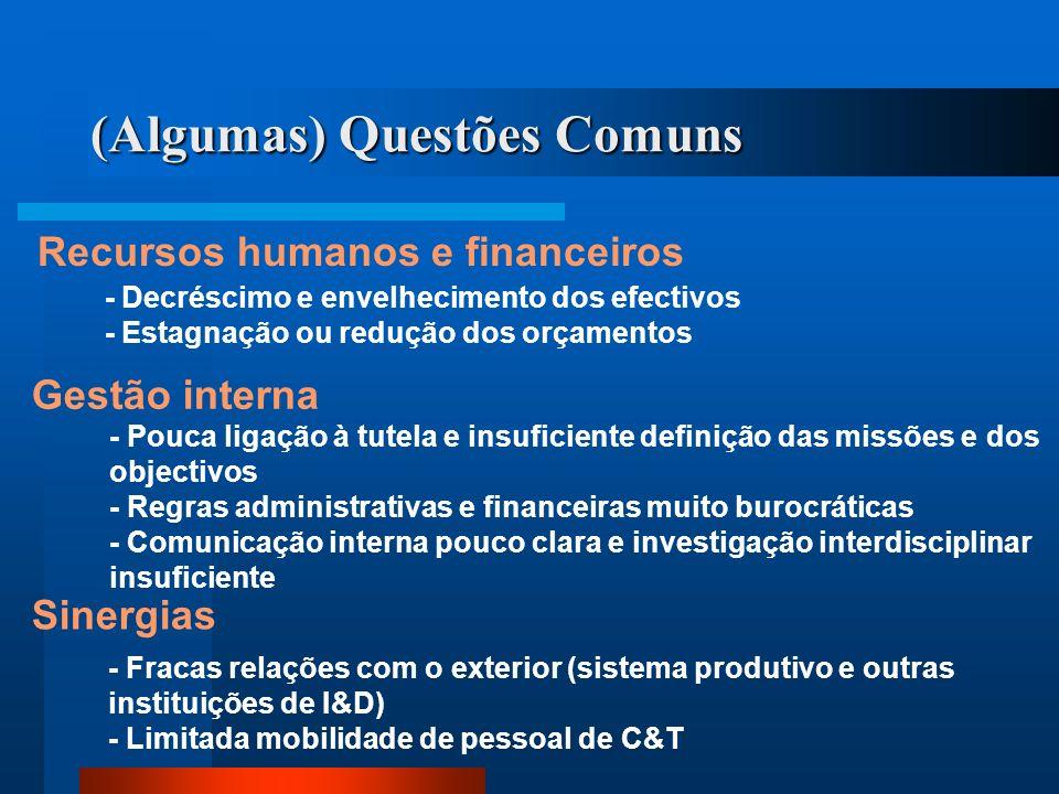 (Algumas) Questões Comuns Recursos humanos e financeiros - Decréscimo e envelhecimento dos efectivos - Estagnação ou redução dos orçamentos Gestão int