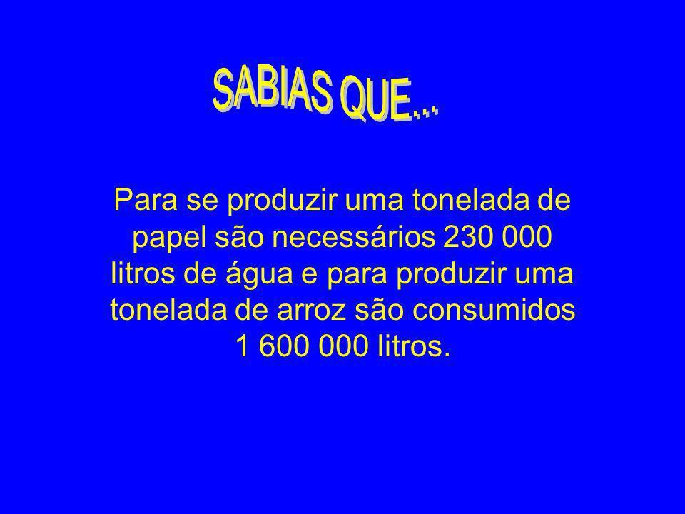 Para se produzir uma tonelada de papel são necessários 230 000 litros de água e para produzir uma tonelada de arroz são consumidos 1 600 000 litros.