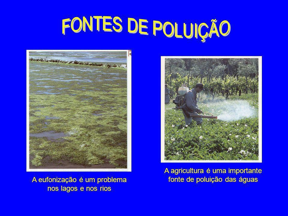A agricultura é uma importante fonte de poluição das águas A eufonização é um problema nos lagos e nos rios