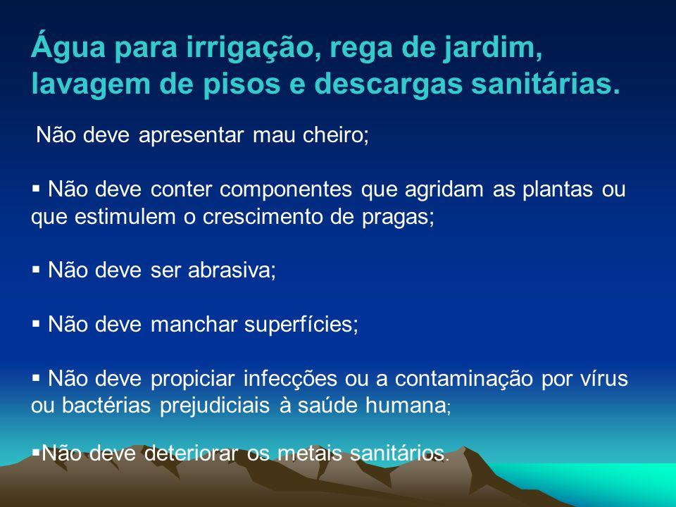 Água para irrigação, rega de jardim, lavagem de pisos e descargas sanitárias. Não deve apresentar mau cheiro; Não deve conter componentes que agridam
