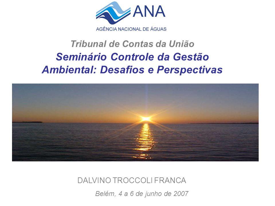 Tribunal de Contas da União Seminário Controle da Gestão Ambiental: Desafios e Perspectivas Belém, 4 a 6 de junho de 2007 DALVINO TROCCOLI FRANCA