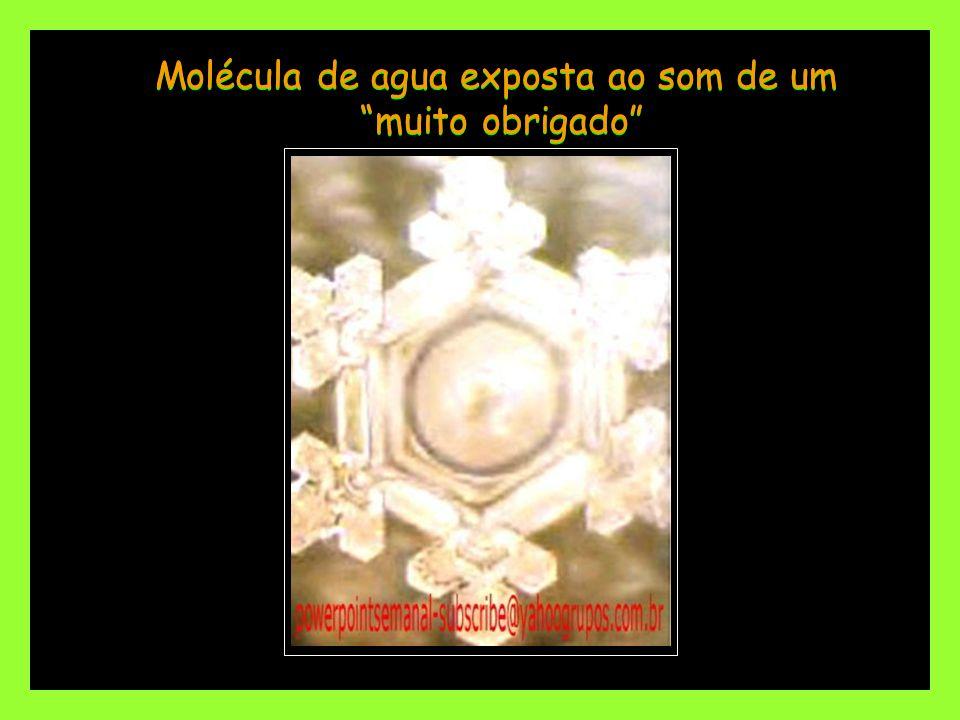 Molécula de agua exposta ao som de um muito obrigado Molécula de agua exposta ao som de um muito obrigado