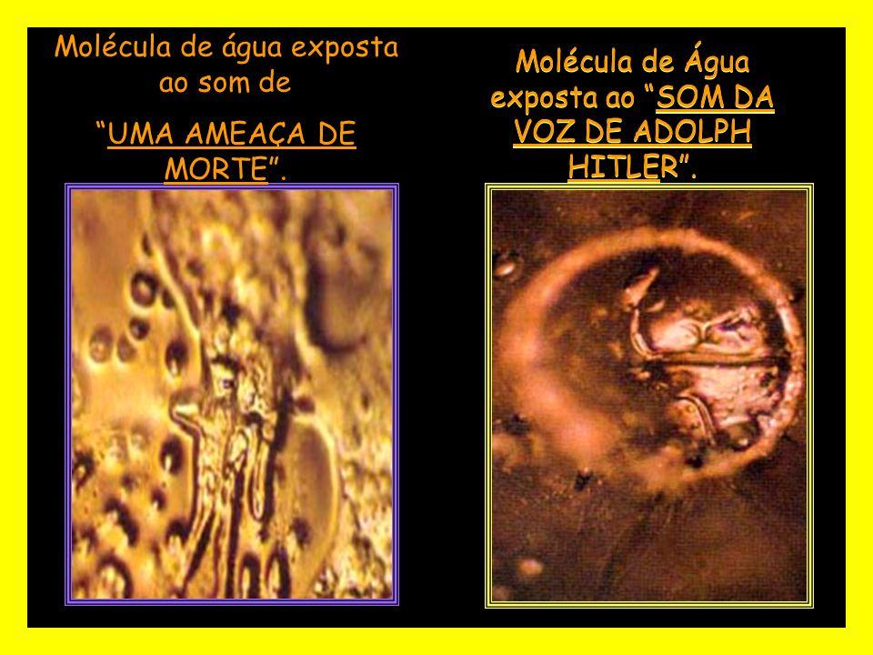 Molécula de Água exposta ao SOM DA VOZ DE ADOLPH HITLER.