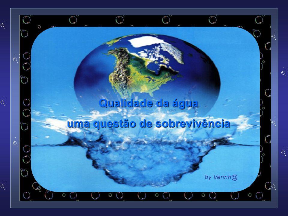 Qualidade da água uma questão de sobrevivência by Verinh@