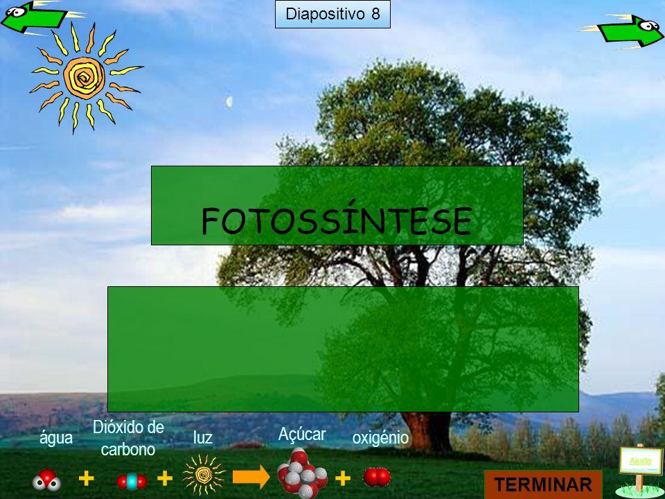 + luz + água Dióxido de carbono Açúcar + oxigénio FOTOSSÍNTESE TERMINAR Ajuda Diapositivo 8