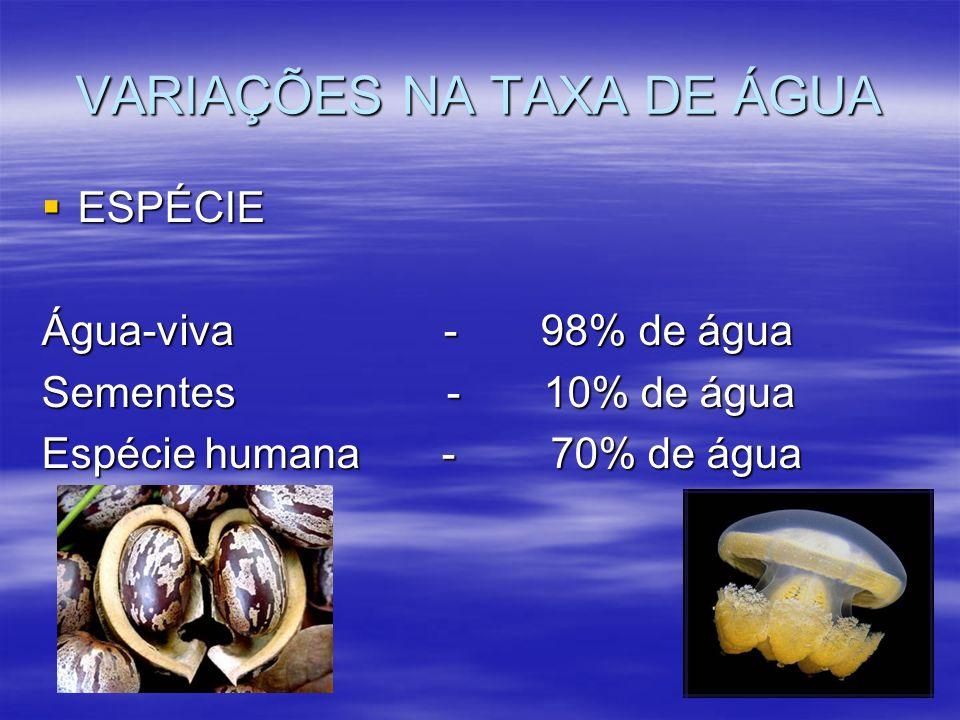 VARIAÇÕES NA TAXA DE ÁGUA ESPÉCIE ESPÉCIE Água-viva - 98% de água Sementes - 10% de água Espécie humana - 70% de água