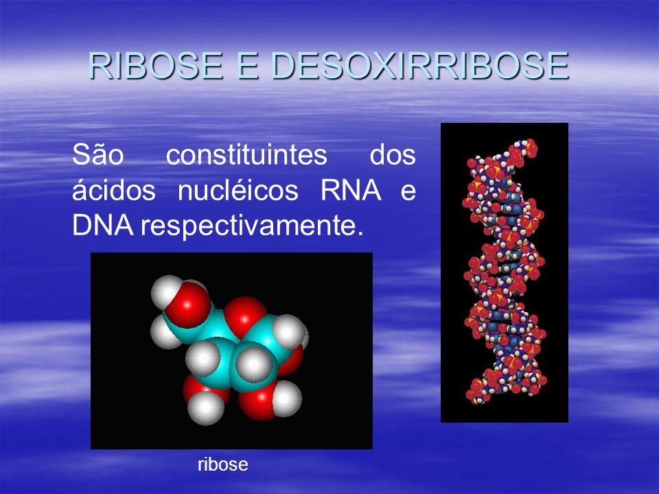 RIBOSE E DESOXIRRIBOSE São constituintes dos ácidos nucléicos RNA e DNA respectivamente. ribose