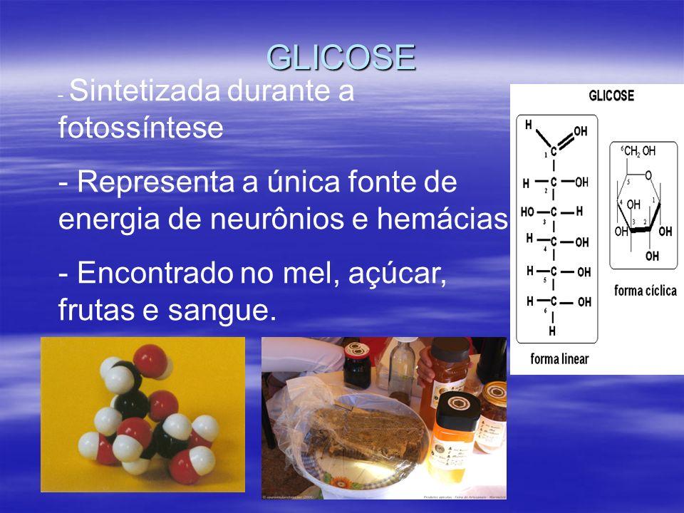 GLICOSE - Sintetizada durante a fotossíntese - Representa a única fonte de energia de neurônios e hemácias - Encontrado no mel, açúcar, frutas e sangue.