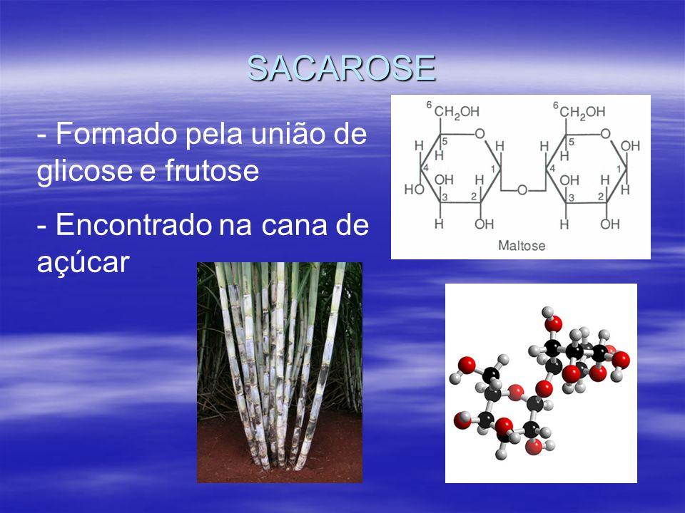 SACAROSE - Formado pela união de glicose e frutose - Encontrado na cana de açúcar