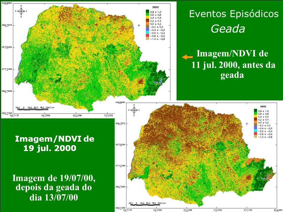Imagem/NDVI de 11 jul. 2000, antes da geada Imagem de 19/07/00, depois da geada do dia 13/07/00 Eventos Episódicos Geada Imagem/NDVI de 19 jul. 2000