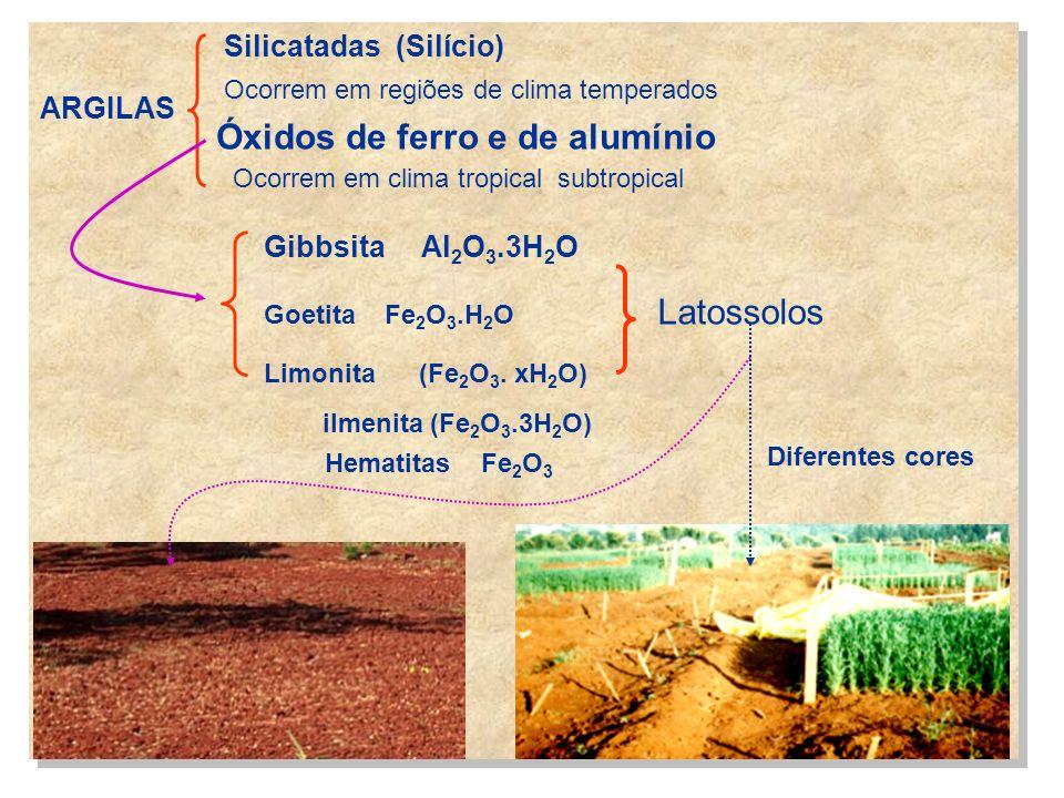ARGILAS Silicatadas (Silício) Ocorrem em regiões de clima temperados Óxidos de ferro e de alumínio Ocorrem em clima tropical subtropical Gibbsita Al 2
