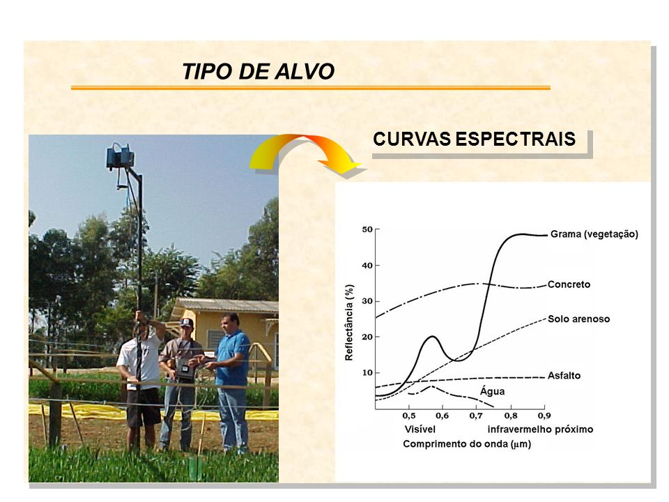 CURVAS ESPECTRAIS TIPO DE ALVO
