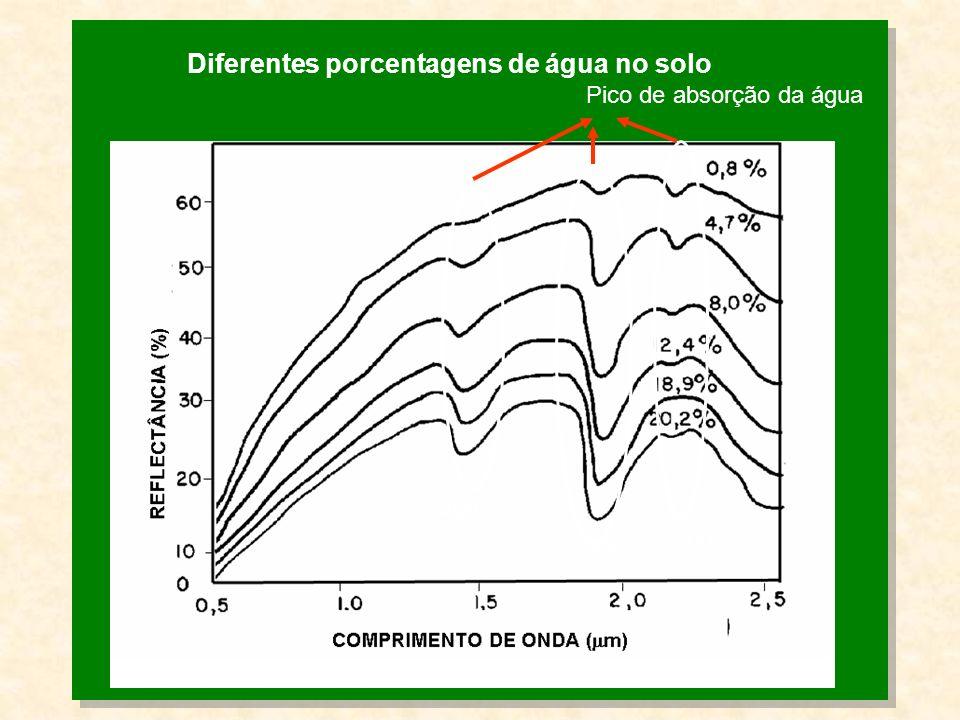Diferentes porcentagens de água no solo 1400 1900 2200 Pico de absorção da água