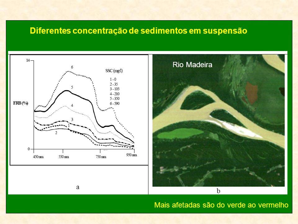 Diferentes concentração de sedimentos em suspensão Rio Madeira Mais afetadas são do verde ao vermelho