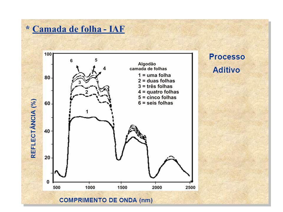 * Camada de folha - IAF REFLECTÂNCIA (%) COMPRIMENTO DE ONDA (nm) Processo Aditivo