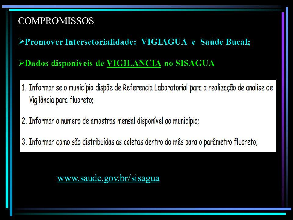 Promover Intersetorialidade: VIGIAGUA e Saúde Bucal; Dados disponíveis de VIGILANCIA no SISAGUA COMPROMISSOS www.saude.gov.br/sisagua