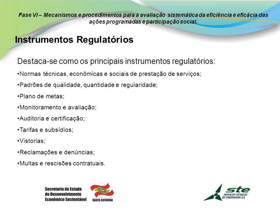 Fase VI – Mecanismos e procedimentos para a avaliação sistemática da eficiência e eficácia das ações programadas e participação social.