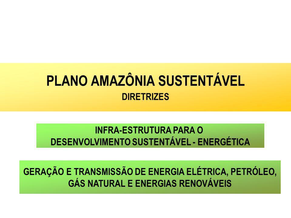 INFRA-ESTRUTURA PARA O DESENVOLVIMENTO SUSTENTÁVEL - ENERGÉTICA PLANO AMAZÔNIA SUSTENTÁVEL DIRETRIZES GERAÇÃO E TRANSMISSÃO DE ENERGIA ELÉTRICA, PETRÓ