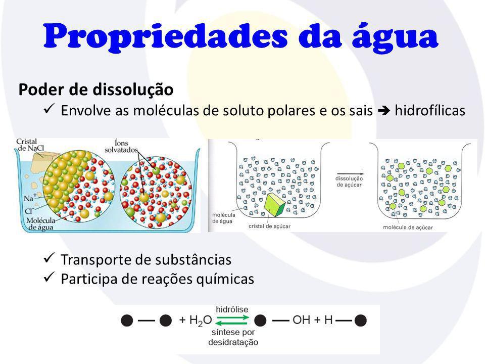 Propriedades da água Poder de dissolução Envolve as moléculas de soluto polares e os sais hidrofílicas Transporte de substâncias Participa de reações