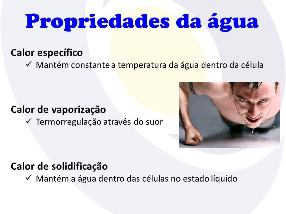 Propriedades da água Calor específico Mantém constante a temperatura da água dentro da célula Calor de vaporização Termorregulação através do suor Cal