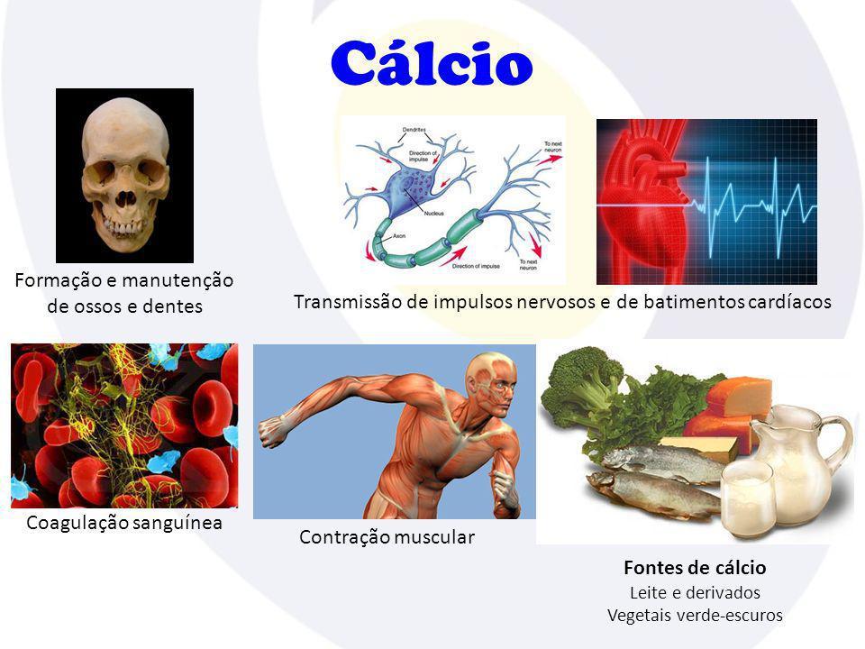Cálcio Coagulação sanguínea Transmissão de impulsos nervosos e de batimentos cardíacos Contração muscular Fontes de cálcio Leite e derivados Vegetais