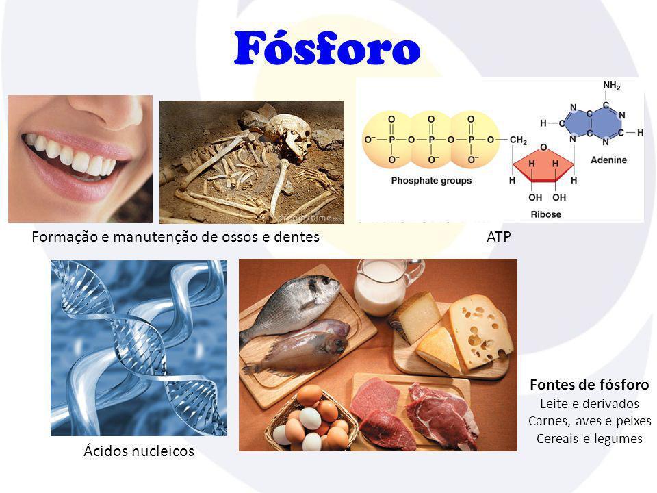 Fósforo Formação e manutenção de ossos e dentes Ácidos nucleicos ATP Fontes de fósforo Leite e derivados Carnes, aves e peixes Cereais e legumes