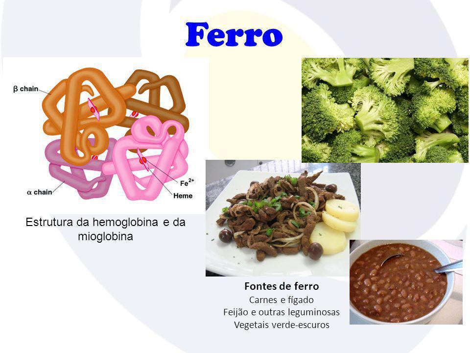 Ferro Estrutura da hemoglobina e da mioglobina Fontes de ferro Carnes e fígado Feijão e outras leguminosas Vegetais verde-escuros