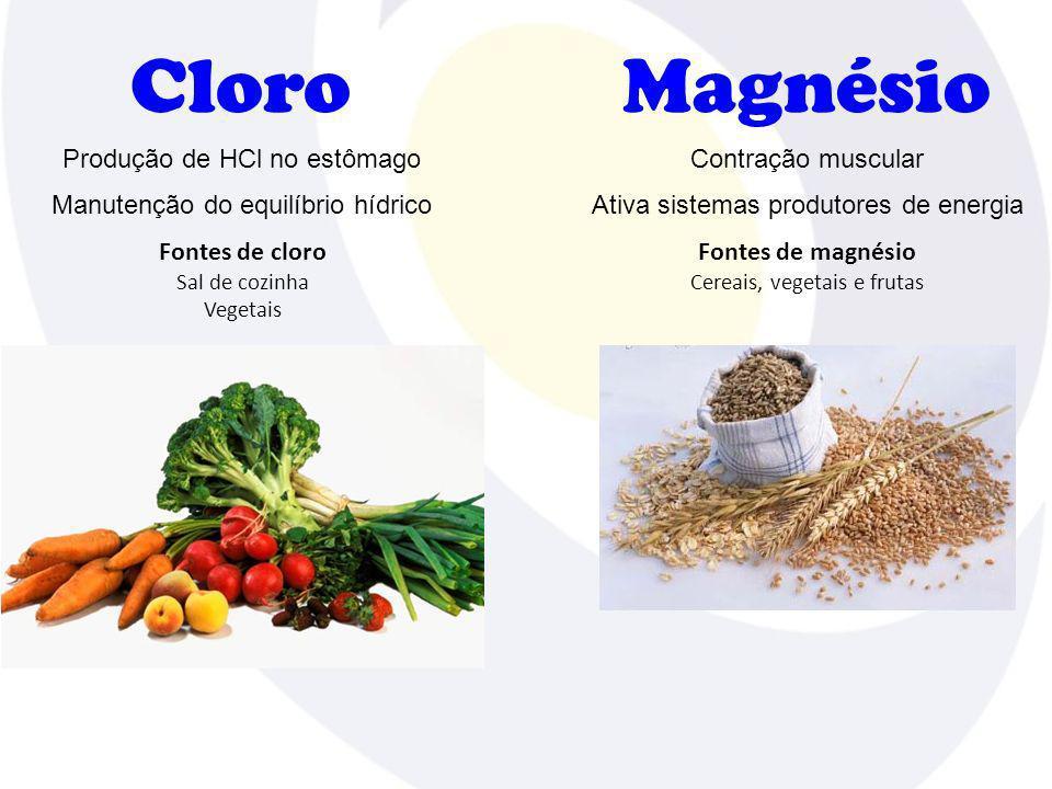 Cloro Fontes de cloro Sal de cozinha Vegetais Produção de HCl no estômago Manutenção do equilíbrio hídrico Magnésio Fontes de magnésio Cereais, vegeta