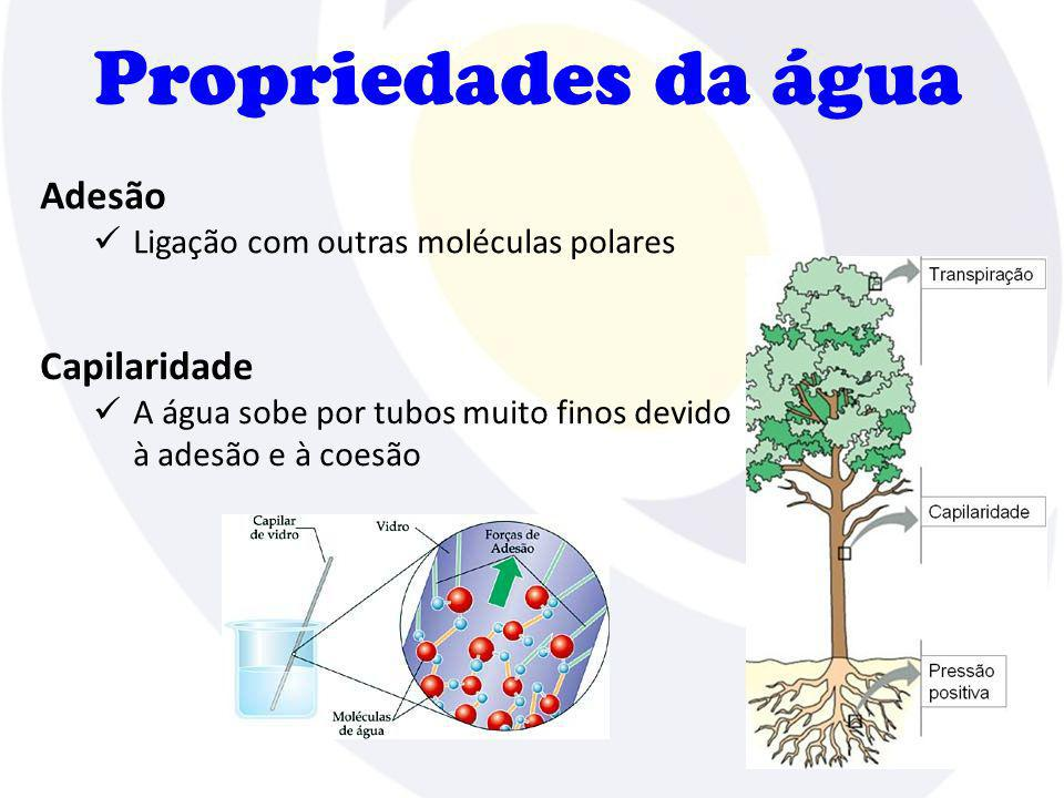 Propriedades da água Adesão Ligação com outras moléculas polares Capilaridade A água sobe por tubos muito finos devido à adesão e à coesão