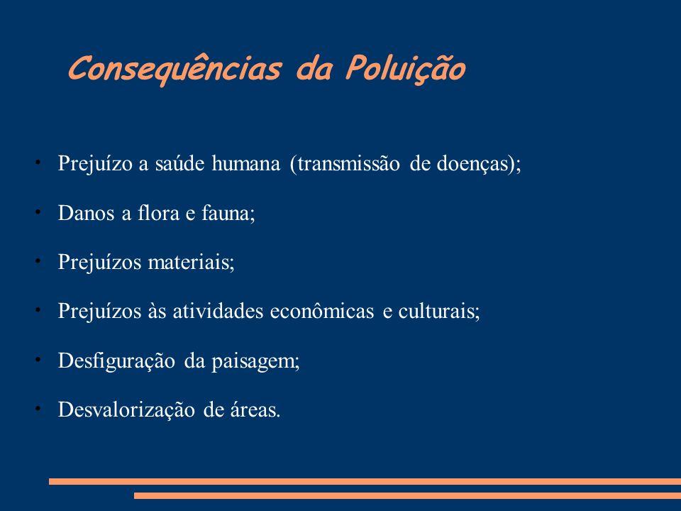 Consequências da Poluição Prejuízo a saúde humana (transmissão de doenças); Danos a flora e fauna; Prejuízos materiais; Prejuízos às atividades econôm