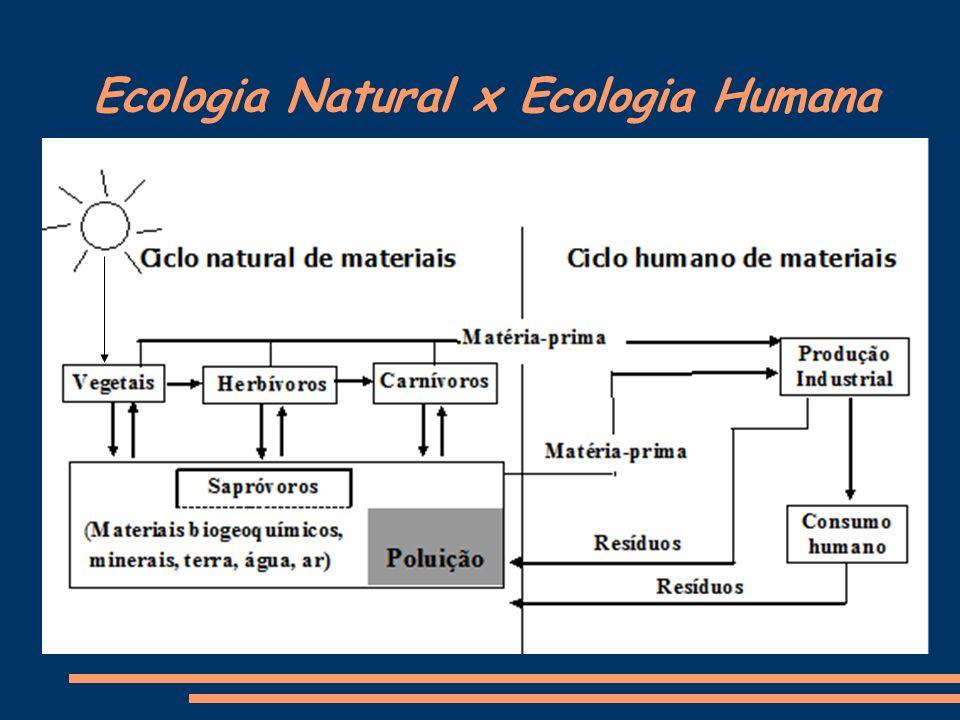 Crise Ambiental RECURSOS NATURAIS POPULAÇÃO POLUIÇÃO Do equilíbrio entre os três elementos – população, recursos naturais e poluição depende o nível de qualidade de vida do planeta.