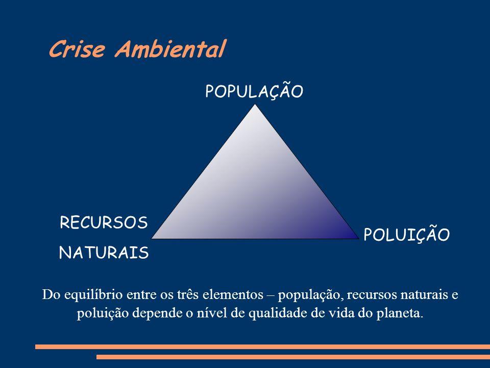 Crise Ambiental RECURSOS NATURAIS POPULAÇÃO POLUIÇÃO Do equilíbrio entre os três elementos – população, recursos naturais e poluição depende o nível d