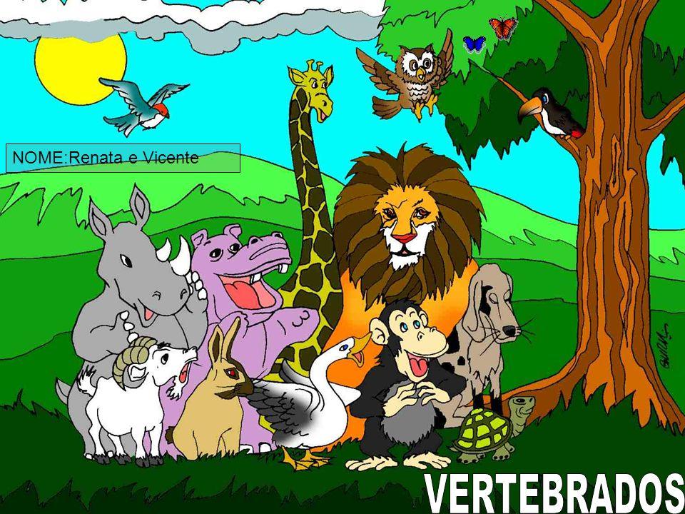 NOME:Renata e Vicente